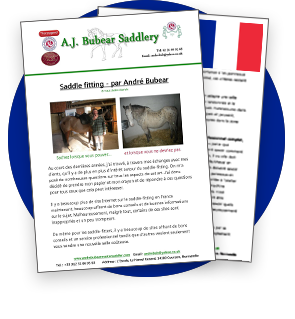 Saddle fitter Bretagne - Normandie - France